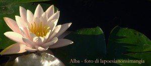 alba_modificato-1