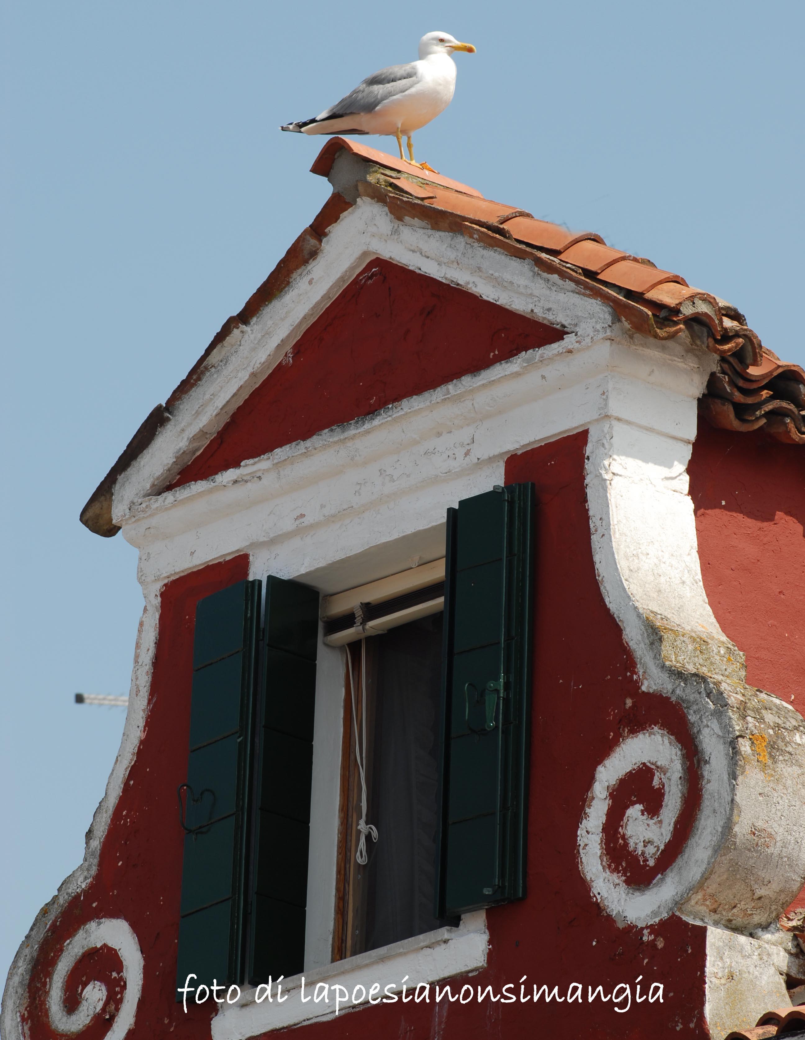 Guardare dalla finestra la poesia non si mangia dove si parla di poesia e poesie - Finestra che non si chiude ...