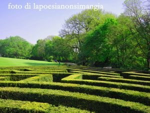 labirinto di Sigurtà Parco