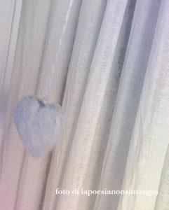 cuore dove