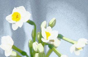 Eco e Narciso sono tra noi